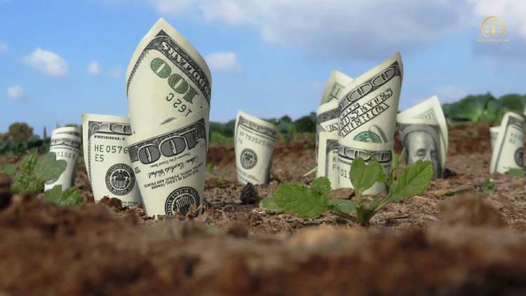 Ghi nợ tiền sử dụng đất